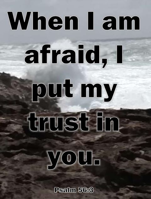 MB Dahl - Psalm 56:3