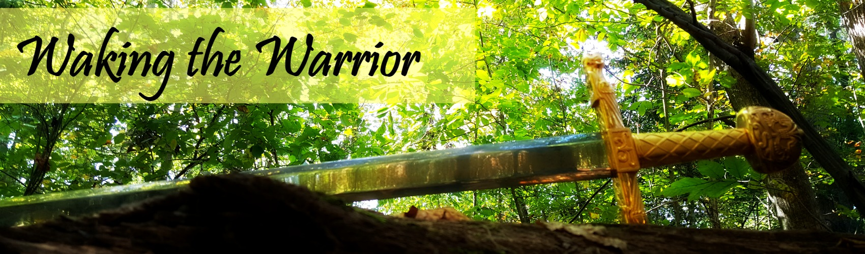 Waking the Warrior - Being God's Person